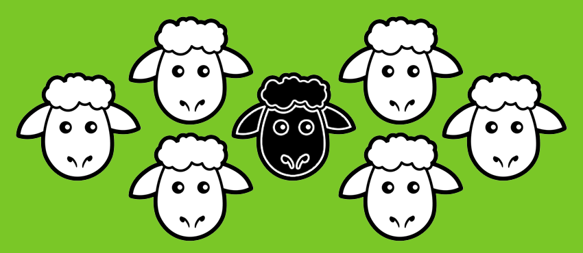 black sheep branding