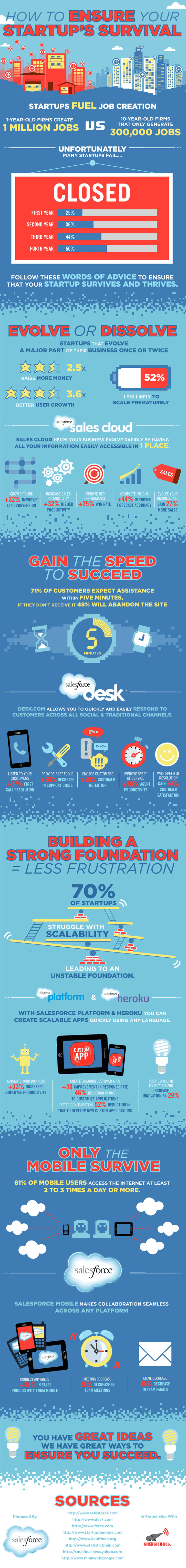 startup survival infographic