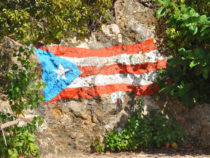 Neil Billock in Puerto Rico: How Tailored Digital Marketing can Help Businesses on the Island