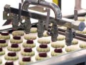 The Implications of Not Using Food Grade Lubrication